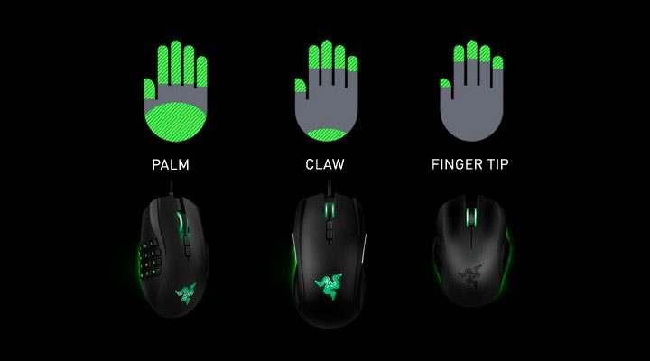 tipuri de grip la un mouse palm claw si fingertip